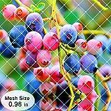 Agfabric Anti Bird Protection Net Super Strong Fruit Vegetables Flower Garden Pond Netting, 7x20ft, Light Blue
