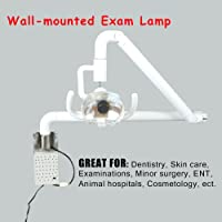 Dimmable Halogen Wall-Mounted Inspection Lamp – for Professional Use and Hobbies...
