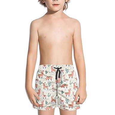 91de5d45b Baby Boy's White Crewneck Cotton Long Sleeve Sweatshirt Alpaca Llama Cactus  in Desert Sweatshirts for Boys