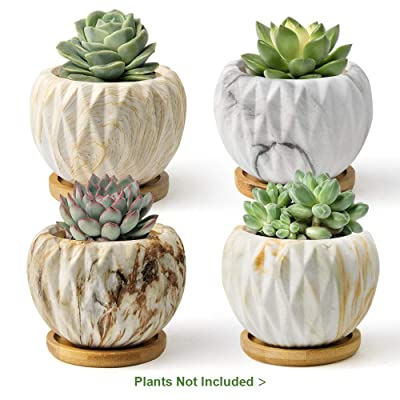 FairyLavie 3.7 Inch Modern Planter for Indoor Plants, Marbling Ceramic Succulent Pots Flower Pot with Bamboo Trays, Perfect for Home Office Decor and Unique Gift for Family Friends Colleague, Set of 4: Garden & Outdoor