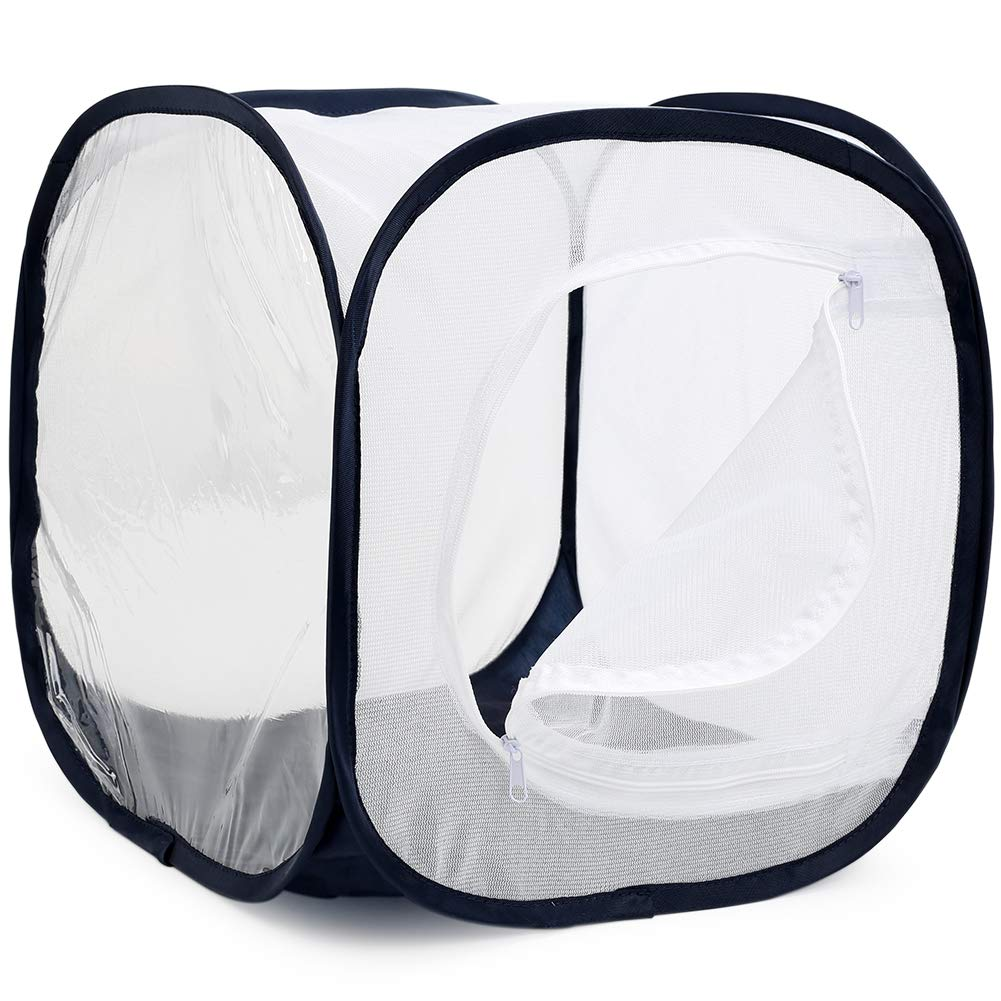 Polyester Bottom for Easier Clean Insect and Butterfly Habitat Cage Terrarium Pop-up 12 X 12 X 12 Inches