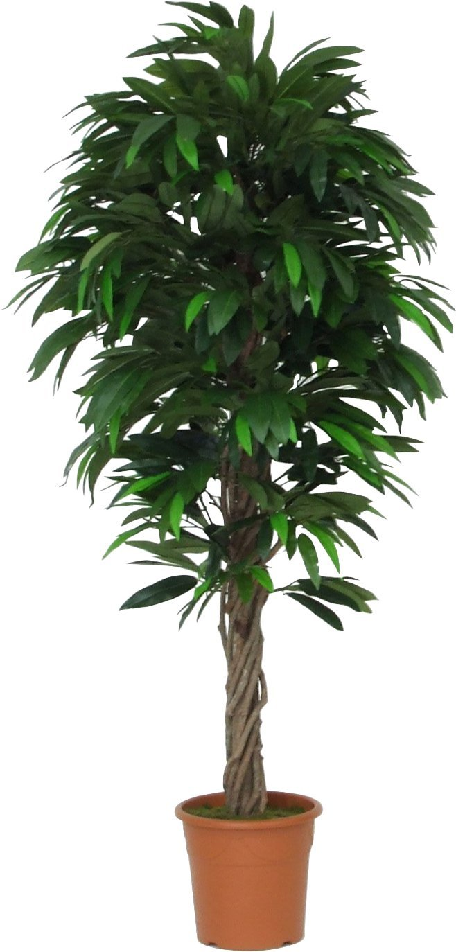 Mango - Albero Artificiale Da Arredo Interno Con Tronchi Naturali Tipo Liana - Alto 150 cm Verdevip