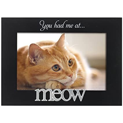 Malden You Had Me At Meow Cat Frame Holds A 4 X 6 Photo Of Your