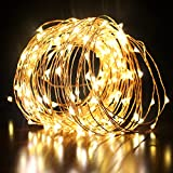 Dimmable Led Starry String Lights with Remote Control, Waterproof 200 Leds Twinkle lights 66ft/20m Copper Wire Lights for Indoor Outdoor, Christmas Decorative Lights for Seasonal Holiday (Warm White)