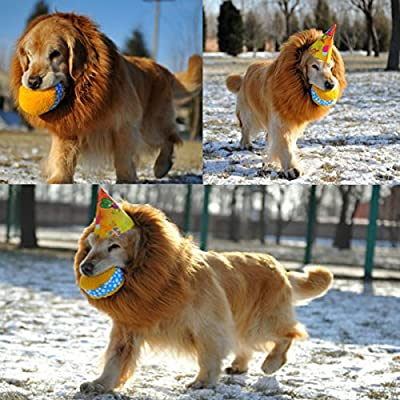 Pet Dog Cat Costume Lion Mane Wig For Halloween Party