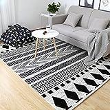 Interior carpet Rectangular Carpet Carpet Door Entrance Carpet Door Mat Living Room Carpet Coffee Table Mat (160 230 Cm) blanket ( Color : C , Size : 1600230cm )