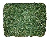 Viking Farmer Alfalfa Hay for Rabbits & Small Pets - 10 lbs