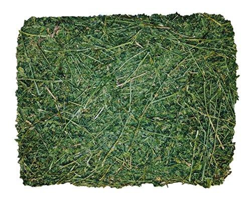Viking Farmer Alfalfa Hay for Rabbits & Small Pets - 10 lbs by  Viking Farmer