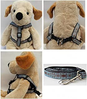 "product image for Diva-Dog 'Calligraphy Blue' Custom 5/8"" Wide Dog Step-in Harness with Plain or Engraved Buckle, Matching Leash Available - Teacup, XS/S"