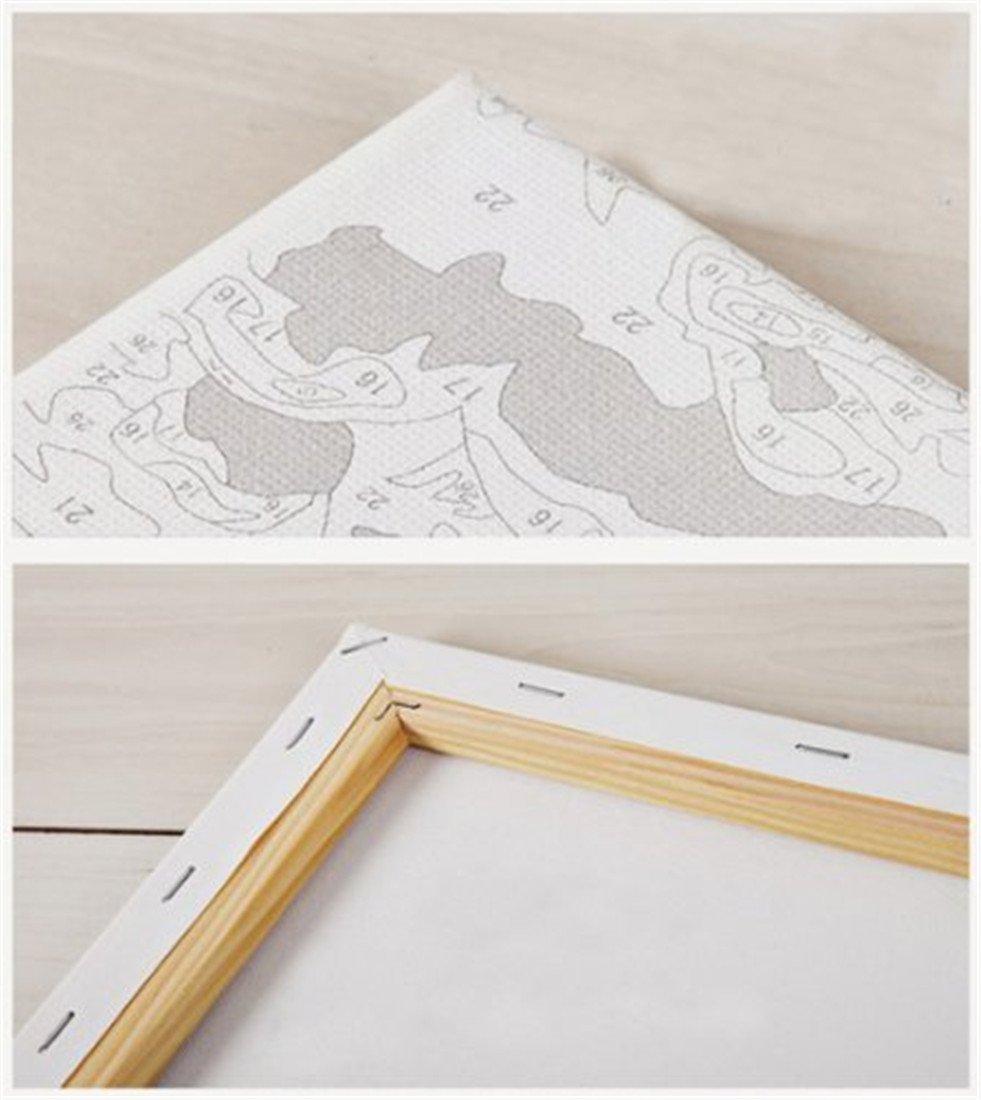 Muschi Gatto 40x50cm YEESAM ART DIY Dipingere con i numeri Adulti Bambini