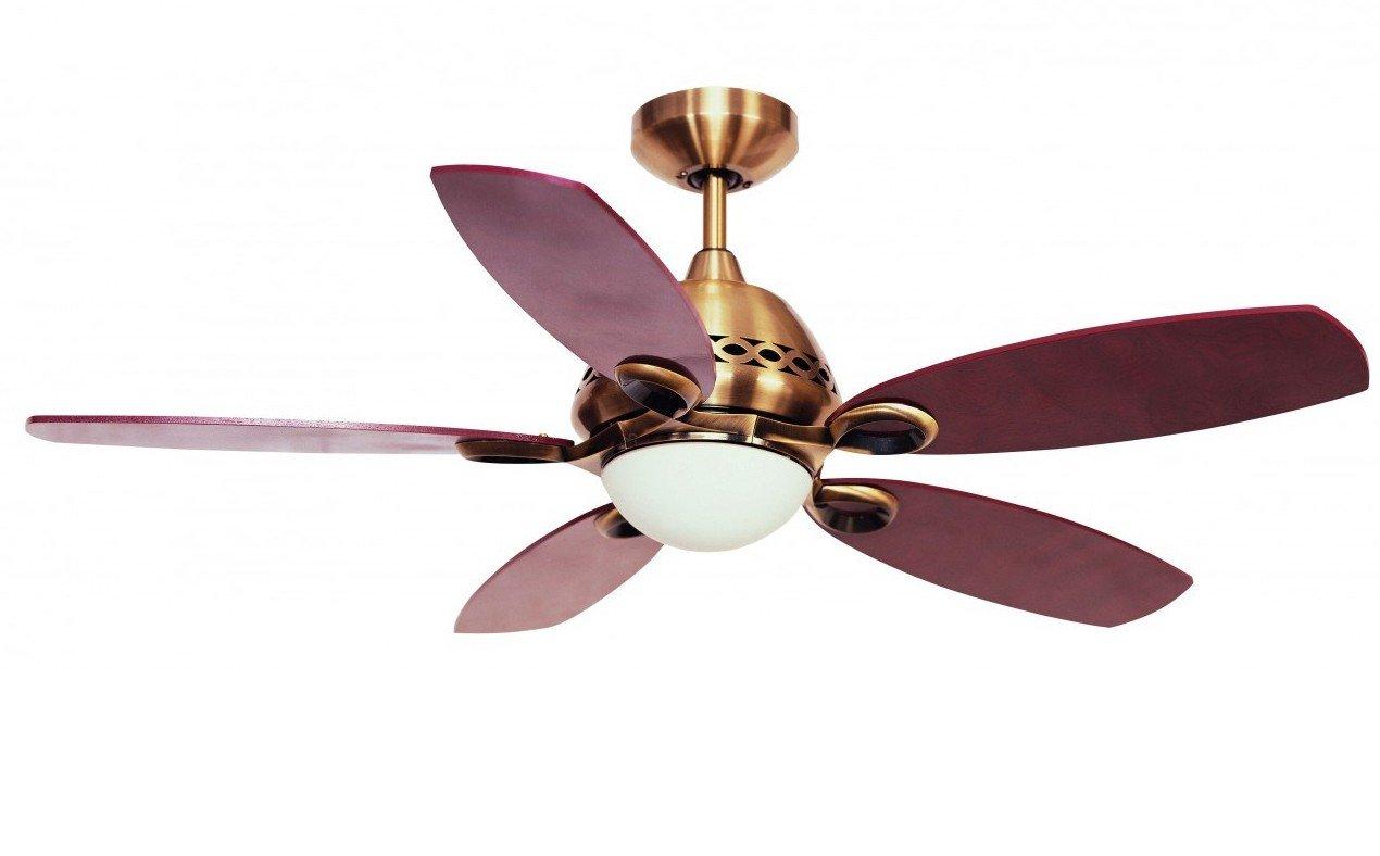 Fantasia Phoenix Ceiling Fan 42in Ant Brass Light Remote Co Uk Kitchen Home