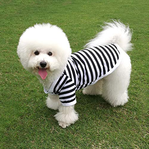 QiCheng&LYS Dog Striped T-Shirt Pet Cute Vest Short Sleeves Summer Apparel for Small Dog Boy and Girl (L, Black)