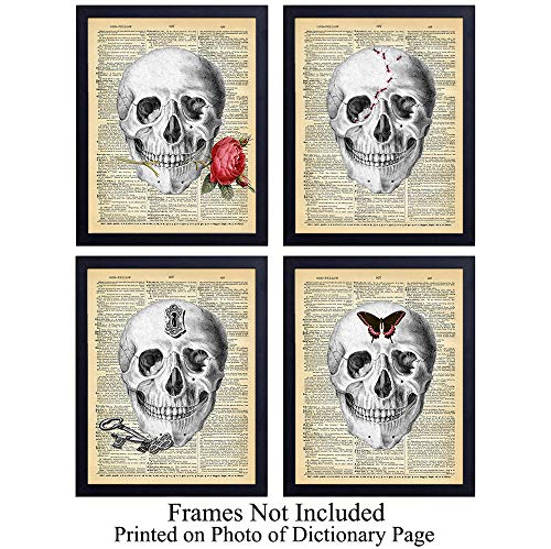 Four Skulls Wall Art Print on Dictionary Photo - Set of Four (8x10) Ready to Frame Vintage Photos - Steampunk - Makes a Perfect Gift and Great for Home Decor - Locks, Ants, Butterfly, Rose