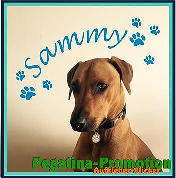 Personalisiertes Hunde Wandtattoo Aufkleber Hundename Nach Wunsch + Pfoten  Aufkleber Hund Sticker