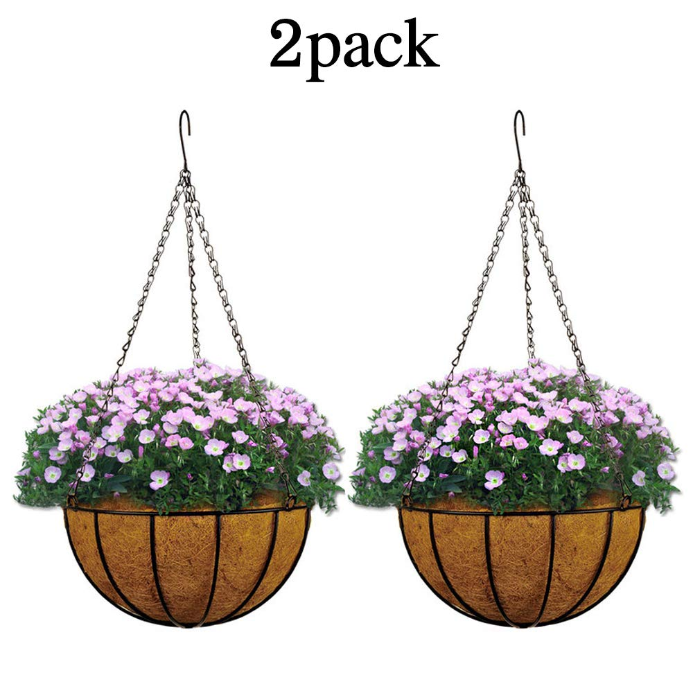 Metal Hanging Planter Basket with Coco Coir Liner Wall Mount Wire Plant Holder for Indoor Outdoor Garden Porch and Balcony (8-Inch)