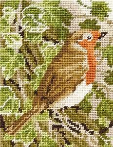 Anchor - Kit para principiantes de tapiz para bordar, diseño de petirrojo