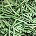 Kentucky Blue Pole Bean Seeds - Non-GMO, Heirloom - Green Bean Vegetable Garden Seeds - Phaseolus vulgaris