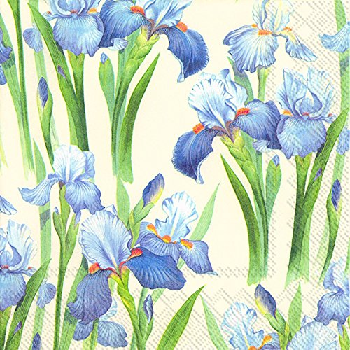 Celebrate the Home Floral 3-Ply Paper Luncheon Napkins, Iris, 20 Count