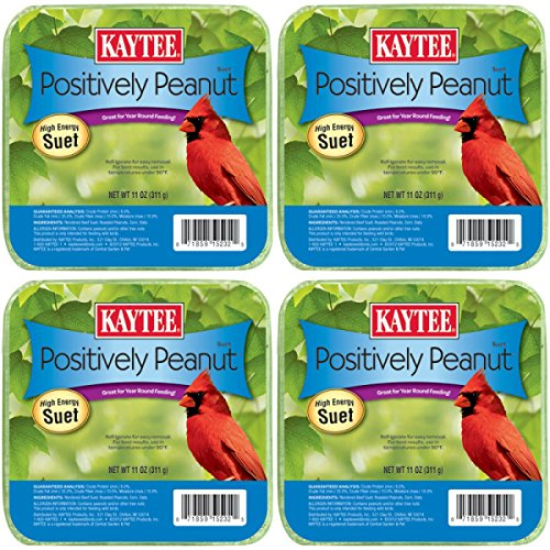 4 Packs One Price! KAYTEE 11 OZ. PEANUT SUET CAKE