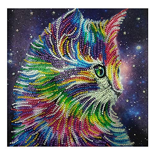 - Special Shaped Diamond Painting DIY 5D Partial Drill Cross Stitch Kits Crystal Rhinestone Of Picture Serial Diamond Embroidery Arts Craft (Cat)