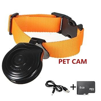 Oumeiou - Collar para mascotas con cámara grabadora de vídeo, monitor de seguridad con 8 GB tarjeta de memoria para perros, gatos y cachorros: Amazon.es: ...