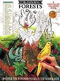 Start Exploring Forests, Elizabeth Dudley, 0894717820