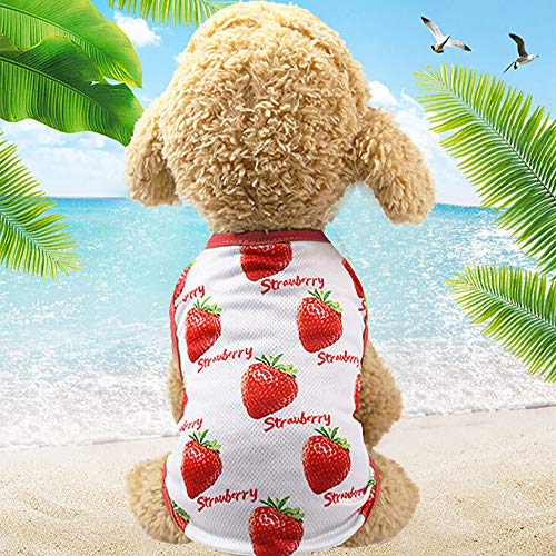 Howstar Pet Clothes, Cute Print Dog Shirts for Puppy Dress Lovely Couples Clothing for Pet Cats Dogs Summer Apparel