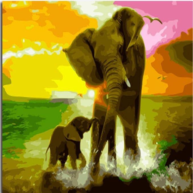 jjyyh Pintura por Números Elefante Y Bebé Elefante 40X50Cm DIY ...