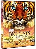 Big Cats: Secret Lives