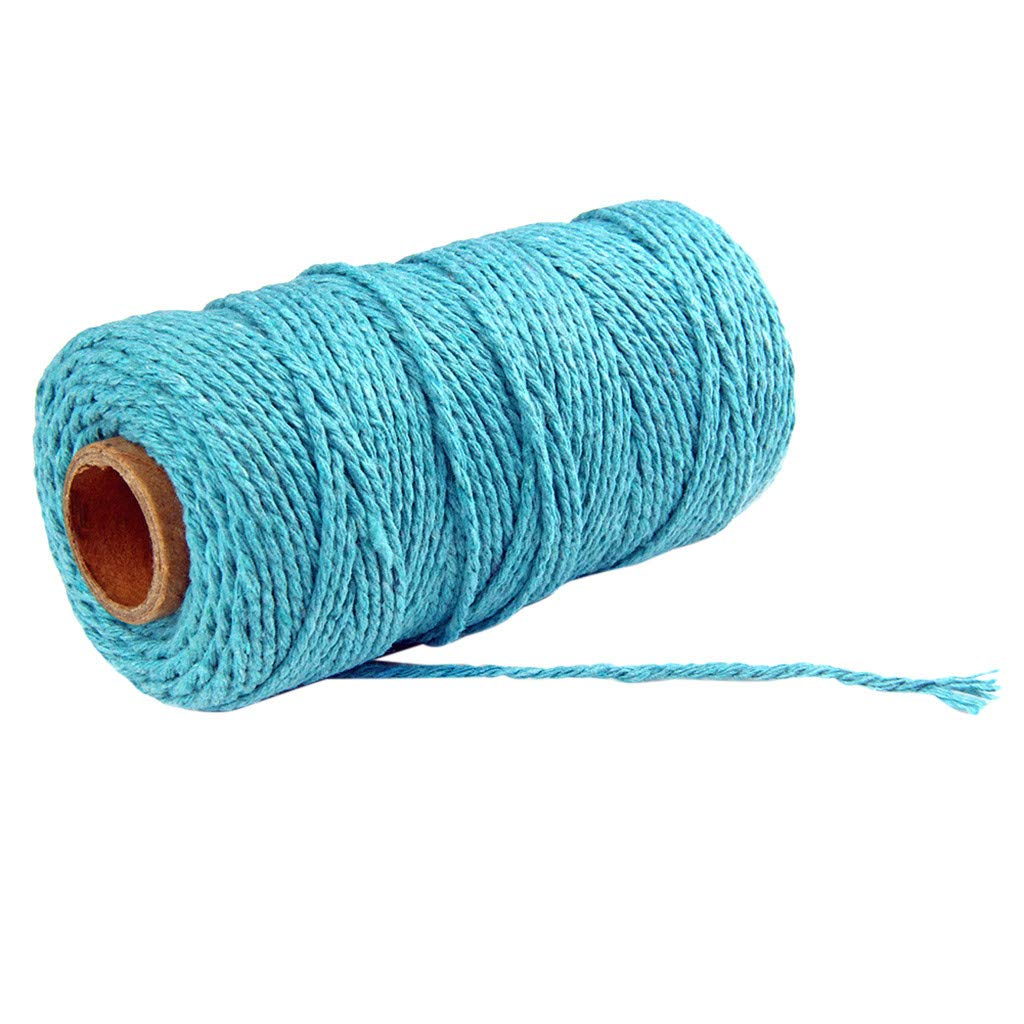 Jute Twine String,100m Long/100Yard Pure Cotton Twisted Cord Rope Crafts Macrame Artisan String (Blue, 2mm)
