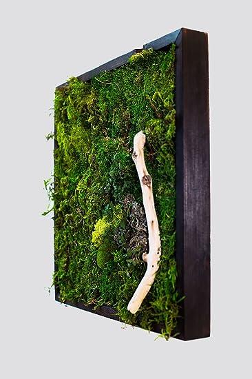 18x18u0026quot; Moss Wall Art With Driftwood