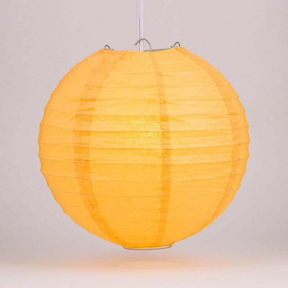 球体ペーパーランタン うね織り模様 ぶらさげるのに(電球は別売り) 20 Inch オレンジ 20EVP-SQ 1 B00A6LZZE4 20 Inch|パパイヤ パパイヤ 20 Inch