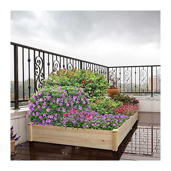 YAHEETECH Wood Raised Garden Bed Boxes Kit Elevated Flower Bed Planter Box for Vegetables Natural Wood 92.3 x 47.4 x 10… 7 BUILD YOUR DREAM GARDEN - This garden bed planter is separated into two growing area for different plants or planting methods. The baffle can be removed to create a bigger growing area if needed. You can get several garden beds to design and build your own dream garden. USEFUL & PRACTICAL - With this helpful planter, you can cultivate plants like vegetable, flowers, herbs in your patio, yard, garden and greenhouse, and make them more convenient to manage. SELECTED MATERIAL - Our raised garden bed is made of no paint, non-toxic fir wood. The boards are only sanded to prevent any undesired injury caused by wood splinters. 1.5cm/ 0.6'' thick solid wood boards are joined and fixed by screws, making it a durable piece for your long-term use.