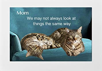 Amazoncom Cat Greeting Cards for Mom Birthday Mothers Day