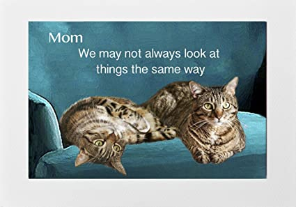 Amazon Cat Greeting Cards For Mom Birthday Mothers Day