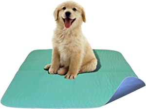 Careoutfit 2 Pack - Premium Waterproof Reusable/Quilted Washable Large Dog/Puppy Training Travel Pee Pads - Size 34 x 36