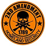 1 Pcs Excited Modern 2nd Amendment Car Sticker Emblem Vinyl Weatherproof 1789 Guns Size 2