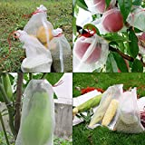 50 PCS Fruit Protection Net Bags with Drawstring