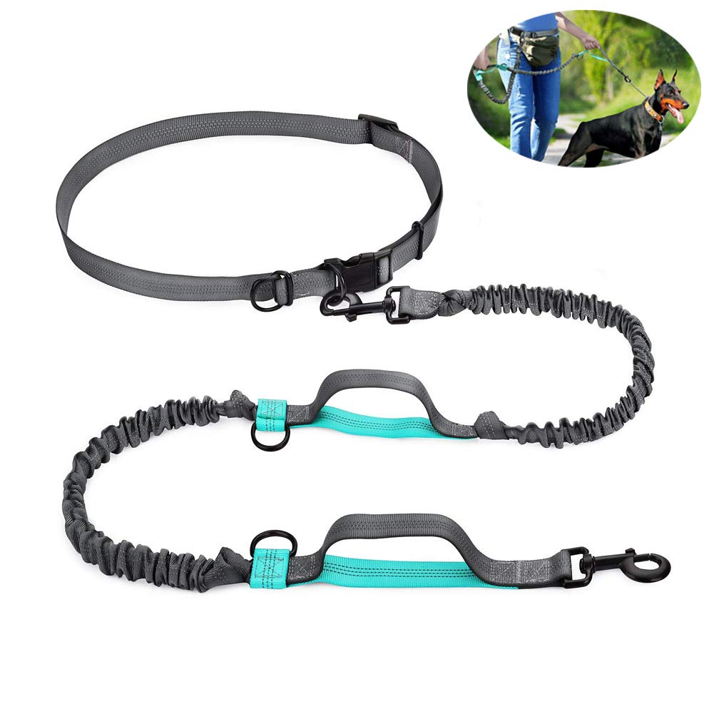 WYYZSS Retractable Hands Free Dog Leash with Dual Bungees Adjustable Waist Belt, Reflective Stitching Leash for Running Walking Hiking Jogging Biking