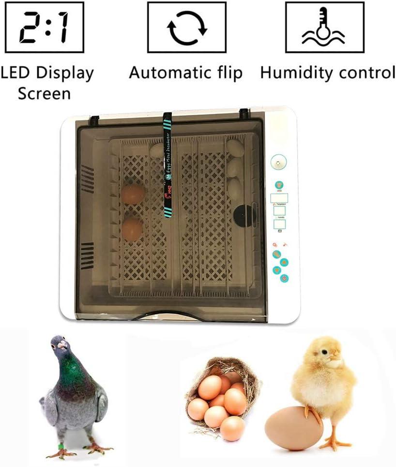 Canard Hisunny Incubateur Temp/érature constante Automatique Incubateur Oeuf Affichage LED pour Couver Poule Caille 36 Oeufs