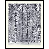 Framed Art Print, 'Pine Forest in the Snow, Yosemite National Park' by Ansel Adams: Outer Size 25 x 31''