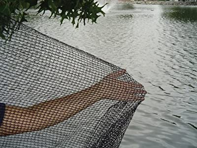 DeWitt Pond Netting, 10 by 12-Feet Size: 1Pack, Model: PN30-1012 , Home & Outdoor Store