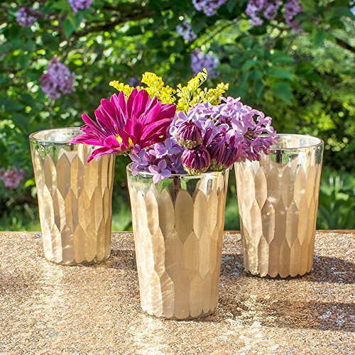 Gold Mercury Glass Candle Holder, Bud Vase, Carved Design, 3.5 inch, (Champagne Gold), (6 Pack)