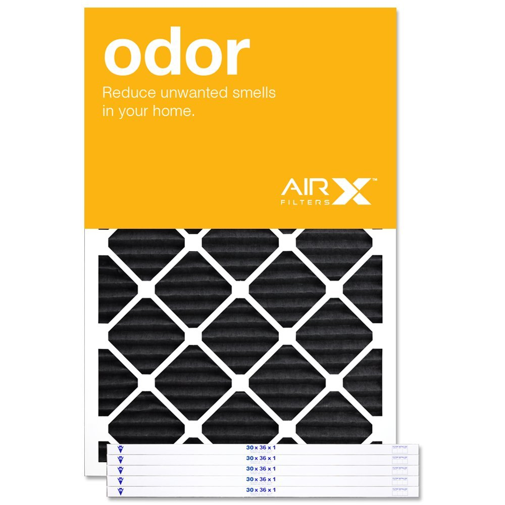 AIRx Filters Odor 30x36x1 Air Filter MERV 4 AC Furnace Pleated Air Filter Replacement Box of 6, Made in the USA by AIRx Filters