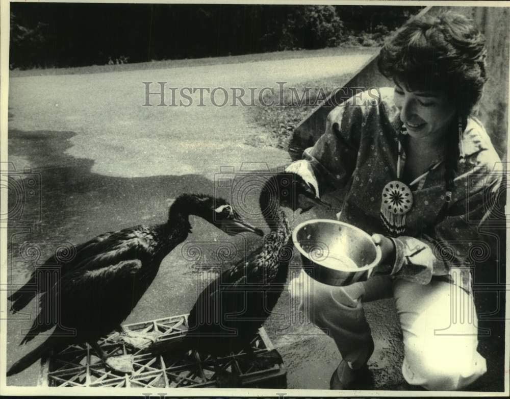 Historic Images - 1986 Press Photo Mary Hoover Feeds Cormorants at Preserve in Delmar, New York