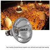 cary-yan 250W Pet Heating Lamp, Waterproof