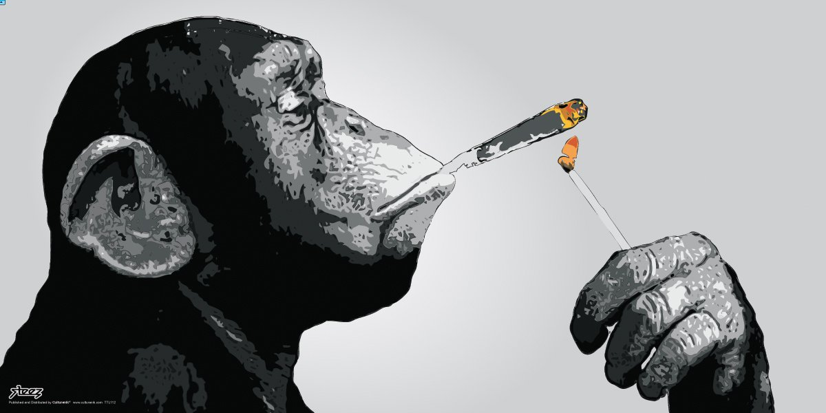Culturenik Steez Monkey Smoking a Joint Decorative Music Urban Graffiti Art Print (Unframed 12x24 Poster)