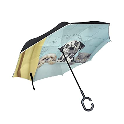 Mnsruu Paraguas invertido Divertido para Gatos, Doble Capa, Paraguas Plegable Resistente al Viento,