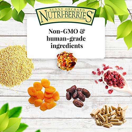 Lafeber's Gourmet Sunny Orchard Nutri-Berries for Parrots 10 oz bag