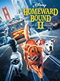 DVD : Homeward Bound Ii: Lost In San Francisco
